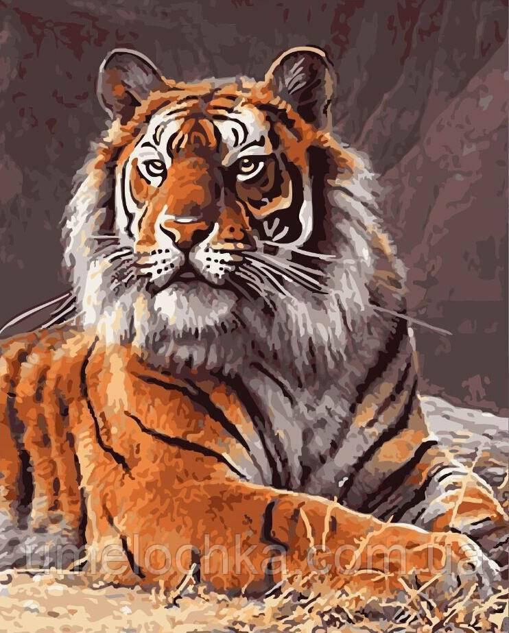 Раскраска на холсте без коробки Король джунглей (BK-GX4662) 40 х 50 см