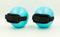 Мяч утяжелитель с манжетом (2шт) WEIGHTED  Мяч утяжелитель с манжетом (2шт) WEIGHTED EXERCISE BALL PS 030-1LB