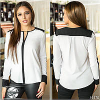 Женская блуза белого цвета с контрастными черными вставками. Модель 16170