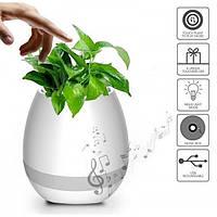 Bluetooth Колонка Цветочный горшок music pots