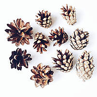 Шишки еловые натуральные малые 2-3 см 10 шт/уп