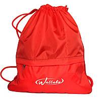 Спортивная сумка - портфель красная