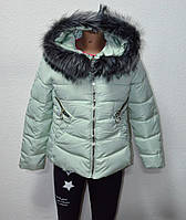 Куртка женская короткая 2689