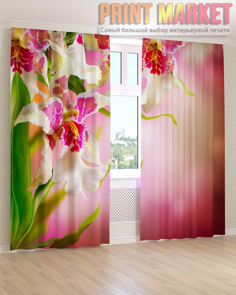 Фото шторы цветы на розовом фоне
