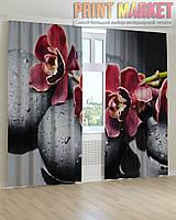 Фото шторы цветы и камни