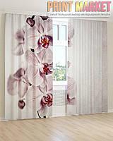 Фото шторы нежно фиолетовая орхидея
