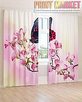 Фото шторы бабочка на ветке