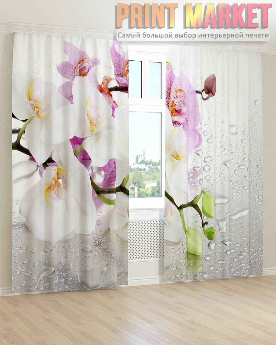 Фото шторы орхидея на стекле