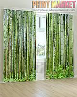 Фото шторы бамбуковый лес