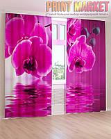Фото шторы большая розовая орхидея