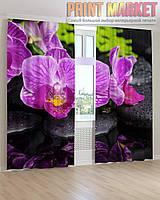 Фото шторы орхидея на черном камне