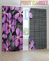 Фото шторы камни и фиолетовые цветы