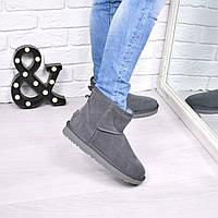 Угги женские UGG низкие серые 3813, зимняя обувь