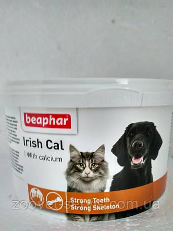 Витаминно-минеральная пищевая добавка для кошек с кальцием IRISH CAL (Айриш Каль) 250 г, фото 2