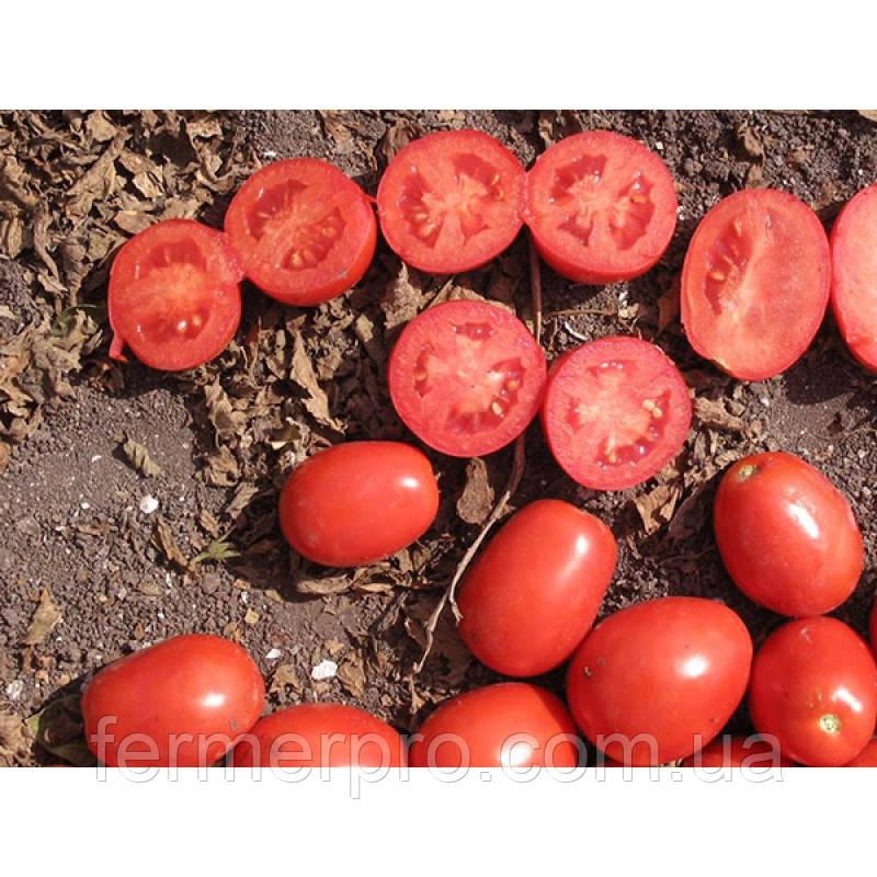 Семена томата Апгрейд F1 \ Apgreyt F1 25000 семян Esasem