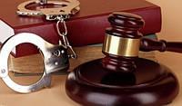 Адвокат по уголовным делам, фото 1