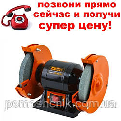 Точило Днипро-М ТЭ-32/25