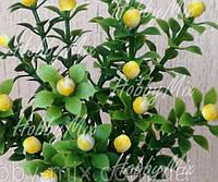 Веточка с мелкими желтыми ягодками, фото 1