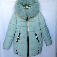 Куртка подростковая зимняя CM #HM-02 для девочек. 128-152 см (8-12 лет). Небесная. Оптом., фото 1