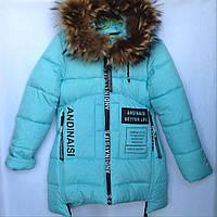 Куртка подростковая зимняя Better LIFE #8726 для девочек. 140-164 см (10-14 лет). Голубая. Оптом., фото 1