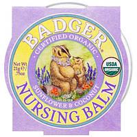 Badger Company, Органический бальзам для младенцев, подсолнух и кокос, 21 г (75 oz)