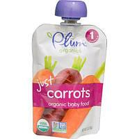 Plum Organics, Органическое детское питание, только морковь, 3 унции (85 г)