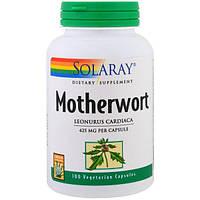 Solaray, Пустырник, 425 мг, 100 вегетарианских капсул