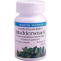 Eclectic Institute, Bladderwrack, 600 mg, 90 Veggie Caps