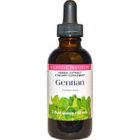 Eclectic Institute, Gentian, 2 fl oz (60 ml)