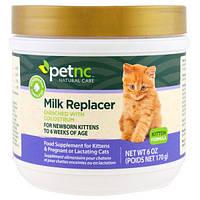21st Century, Природный уход для домашними животными, заменитель молока для котенка, 170 г (6 унций)