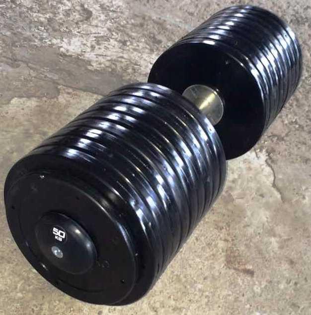 Гантелі професійні нерозбірні Vasil 12 кг