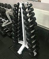 Гантельный ряд обрезиненый со стойкой Vasil Neo Gym 1-10 кг