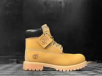 Женские ботинки Timberland 6 БЕЗ МЕХА (Тимберленд) желтые
