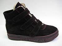 Замшевые женские зимние ботинки сливового цвета на липучках ТМ Камея, фото 1