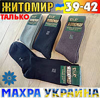 Мужские носки с махрой + шерсть с хлопком Житомир Талько Украина 39-42р размер ассорти НМЗ-04263