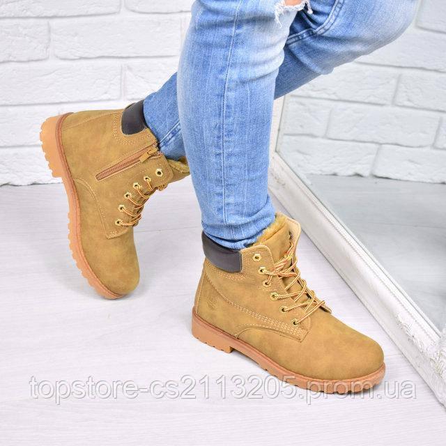 a081f044cde4 Ботинки Timber женские зимние , цена 500 грн., купить в Запорожье ...