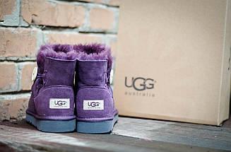 Угги с мехом фиолетовые UGG 3352 Пуговка сирень, фото 3