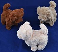 Механическая мягкая игрушка Собака натуральная