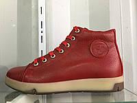 Мужские зимние ботинки на меху all star 40-45 р. (кожа)