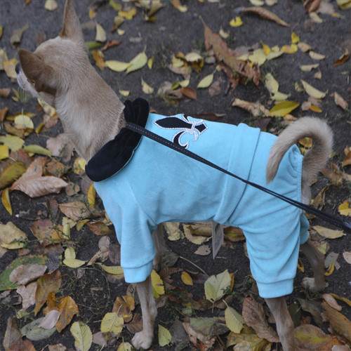 "Комбинезон Pet Fashion ""Гламур""  S  (27-30см) для собак"