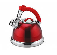 Чайник Bollire 2,5л BR-3005