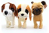 Интерактивная мягкая игрушка «Музыкальная собачка Лучший друг» 3 вида