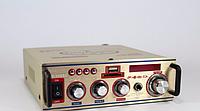 Усилитель звука AMP 909 Small, звуковой усилитель мощности, портативный усилитель звука amp