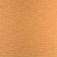 Рулонные шторы Umbra Blackout. Тканевые ролеты Умбра Блэкаут Оранжевый 060, 50 см