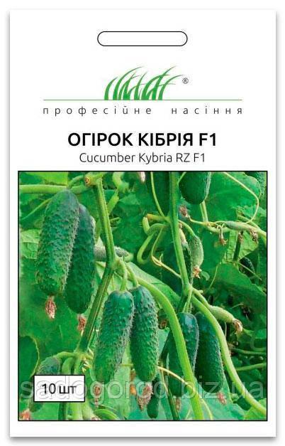 Семена Огурца, Кибрия F1, 10 семян Rijk Zvaan (Голландия)