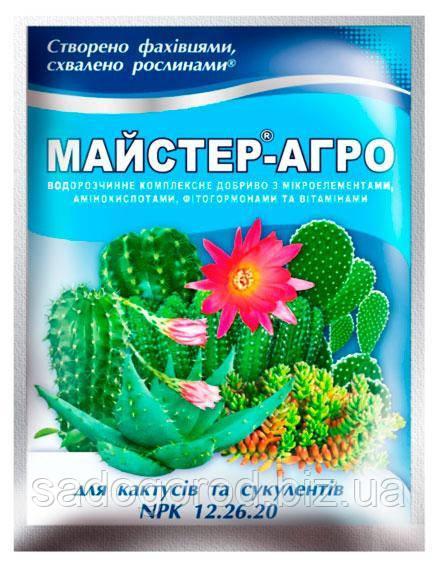 Mастер-Агро для кактусов и суккулентов, 25 г