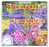 """Субстрат """"Расцвет"""" для сенполий, 5 л"""