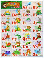 """Плакат А2 """"Азбука английская"""" ламинированная тонкая бумага"""