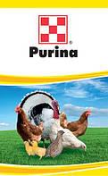 Готовый универсальный корм для страусов TM Purina