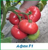 Семена томата Афен F1 (Clause) 250 семян — ранний (70 дней), РОЗОВЫЙ, круглый, индетерминантный.